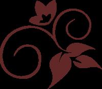 de martin logo - 500x434